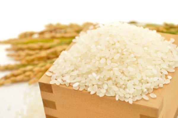 画像1: お米と暮らし◆茨城県産◆特別栽培米◆ミルキークイーン◆白米 (30kg) (1)