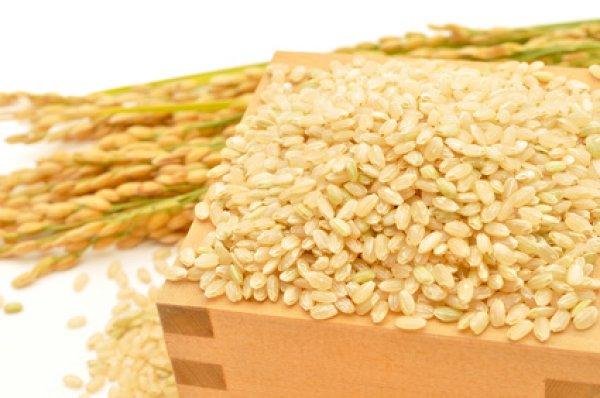 画像1: お米と暮らし◆茨城県産◆有機栽培米◆ミルキークイーン◆玄米 450g〜5kg×2 (1)
