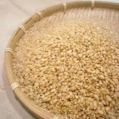 画像2: お米と暮らし◆茨城県産◆有機栽培米◆ミルキークイーン◆玄米+特別栽培小豆◆酵素玄米ごはん◆たっぷりセット